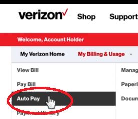 Auto Pay1
