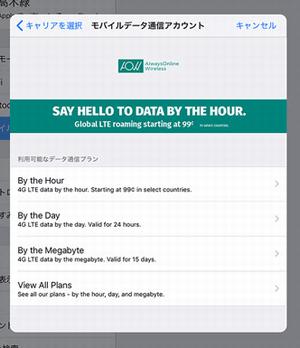 iPadの画面「通信プランの選択」